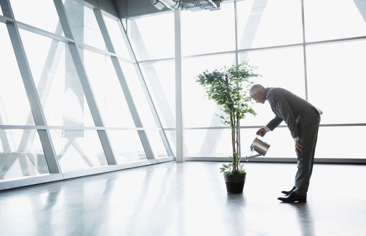 Grow Your Career and Skillset to Retire Early